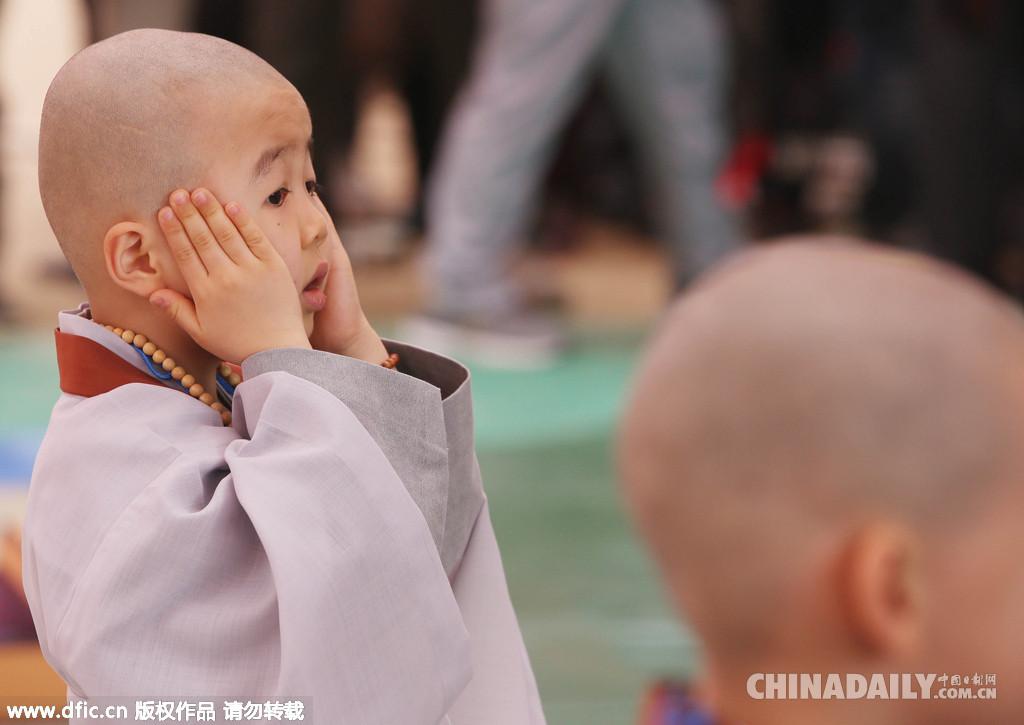 韩国小和尚集体剃度迎接佛诞节 萌态十足