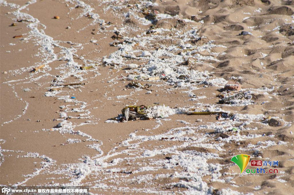 三亚湾大量海洋垃圾漂浮海面