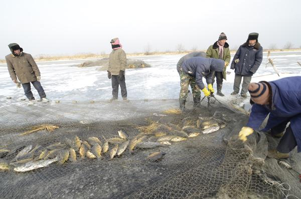 杭州千岛湖巨网捕鱼
