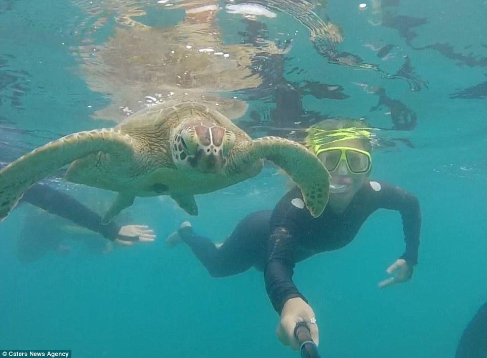 壁纸 海底 海底世界 海洋馆 水族馆 962_707