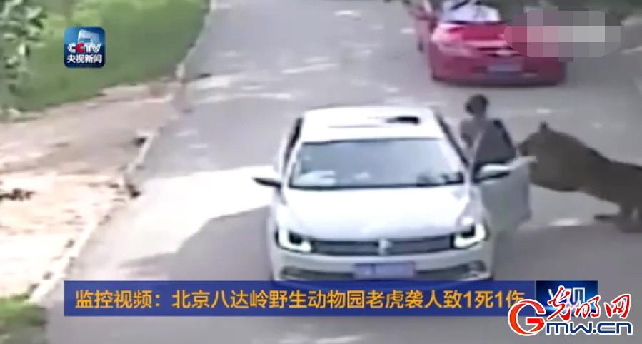 北京动物园老虎袭人致1死